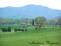 Madison Virginia Farm For Sale